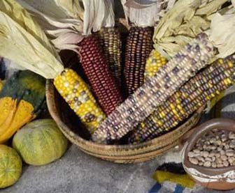 native american clothing first american food and diet